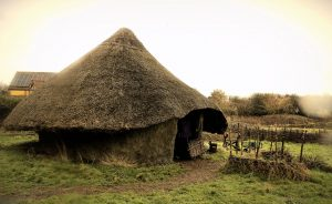 Carrymoor Environmental Trust - The Stone Age Experience